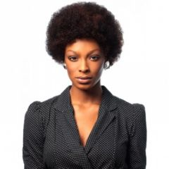 Sleek Afro 100% Human Hair Short Wig | All Colours